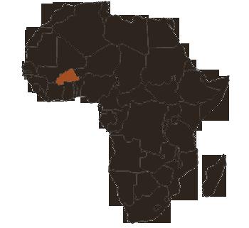 Burkina-African-Rosette