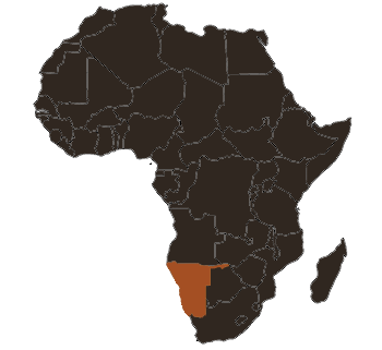 Namibia-African-Rosette